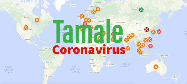 Tamale Coronavirus